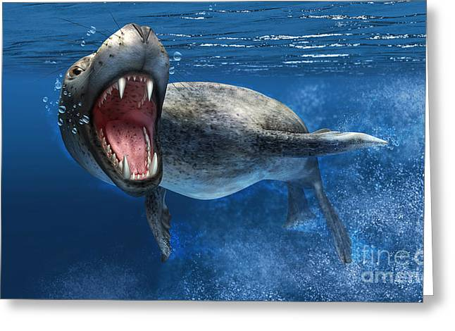 Animal Themes Digital Art Greeting Cards - Leopard Seal Swimming Underwater Greeting Card by Leonello Calvetti