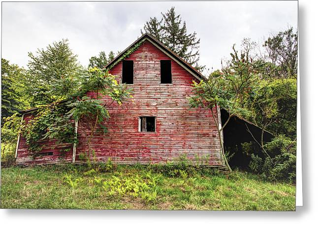 Green Foliage Greeting Cards - Leos Loveable Apple Barn - things you might see in the country Greeting Card by Gary Heller