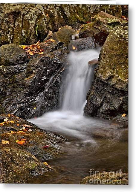 Peaceful Scenery Greeting Cards - LePetit Waterfall Greeting Card by Susan Candelario