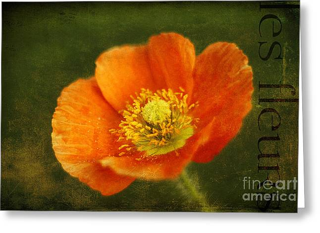 Les Fleurs Greeting Card by Darren Fisher