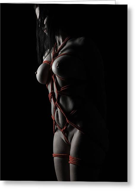 Bdsm Greeting Cards - Lession Learned Greeting Card by Kevin McSparron