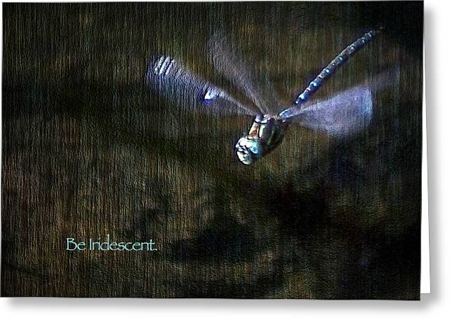 Blue Darner Dragonfly Greeting Cards - Lessons from Nature 1 - Be Iridescent Greeting Card by Belinda Greb