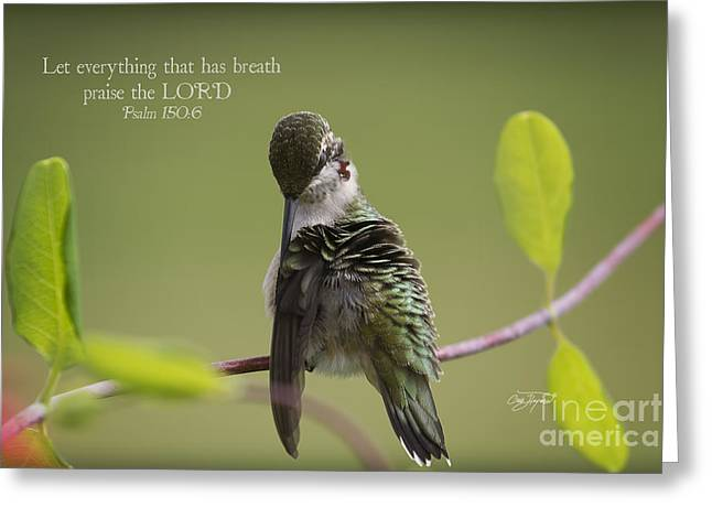 Let Everything That Has Breath Greeting Cards - Let everything that has breath praise the LORD Greeting Card by Cris Hayes