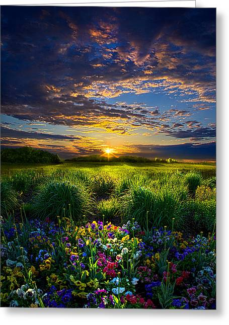 Red Photographs Greeting Cards - Let It Be Greeting Card by Phil Koch