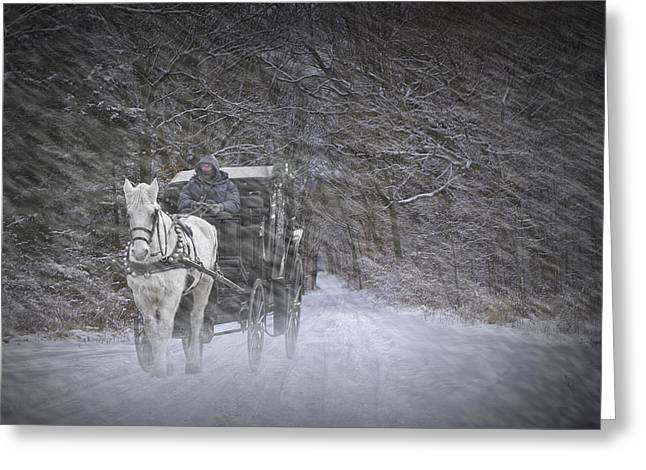 Horse And Cart Greeting Cards - Let it Snow Greeting Card by Randall Nyhof