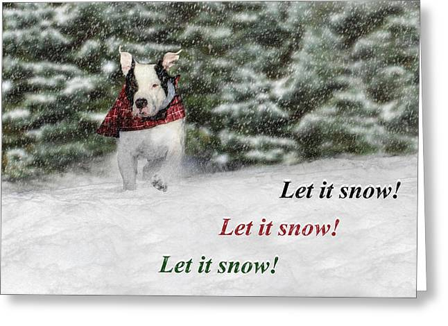 Bully Digital Greeting Cards - Let it Snow Greeting Card by Shelley Neff