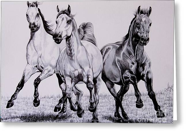 Quarter Horses Drawings Greeting Cards - Let the Dinner Bell Ring Greeting Card by Cheryl Poland