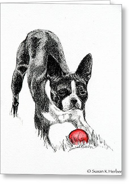 Toy Dog Drawings Greeting Cards - Let The Game Begin Greeting Card by Susan Herber