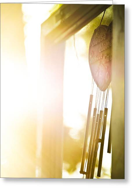 Screen Doors Greeting Cards - Let the Light Shine In Greeting Card by Josh Clifford