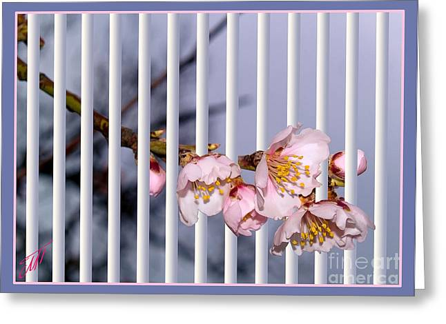 Apricot Digital Art Greeting Cards - Let the spring come in Greeting Card by Magdalen DgArtStudio