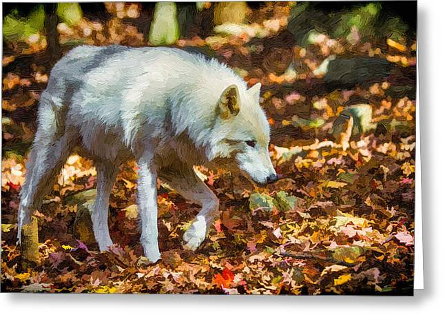 Nature Center Greeting Cards - Let the Timber Wolf Live Greeting Card by John Haldane