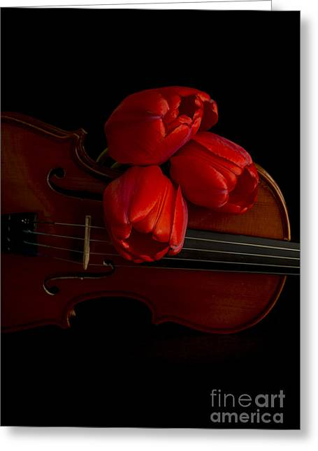 Floral Still Life Greeting Cards - Let Us Make Beautiful Music Together Greeting Card by Edward Fielding