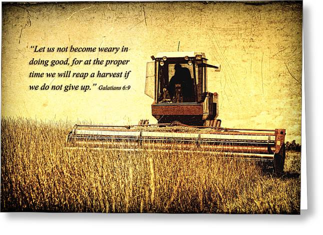 Recently Sold -  - Farmers Field Greeting Cards - Let Us Not Become Weary Greeting Card by Lincoln Rogers