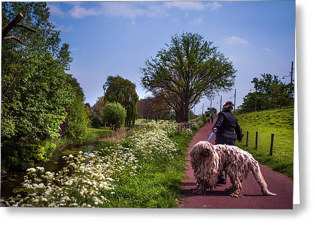 Spring Scenes Greeting Cards - Lets Go Home Greeting Card by Jenny Rainbow