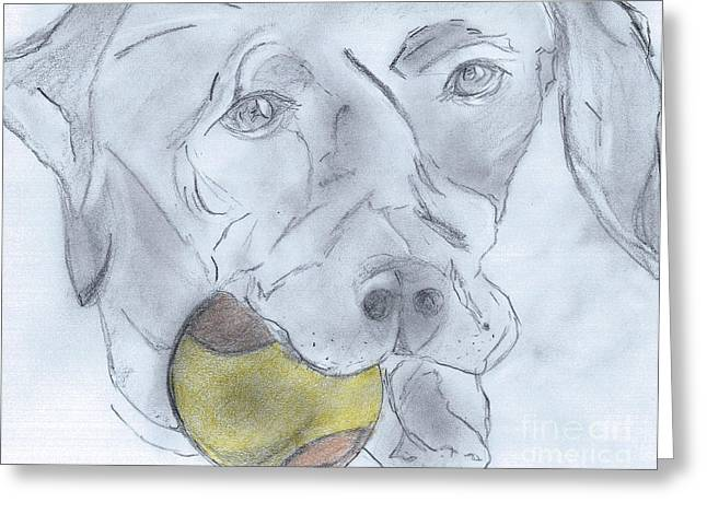 Veterinarian Greeting Cards - Lets Play Ball Greeting Card by Elizabeth Briggs