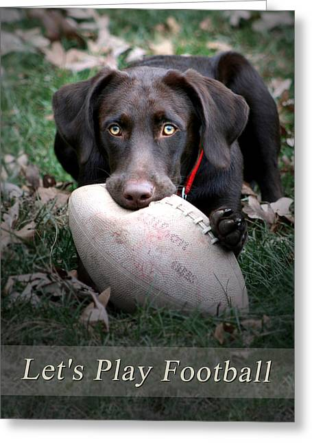Chocolate Lab Greeting Cards - Lets Play Football Greeting Card by Lori Deiter
