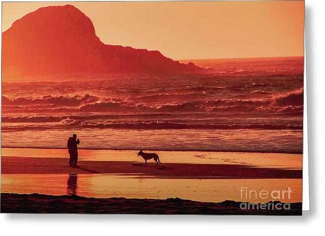 Trinidad Beach Sunset Greeting Cards - Lets Play Greeting Card by Kimberly Cohne