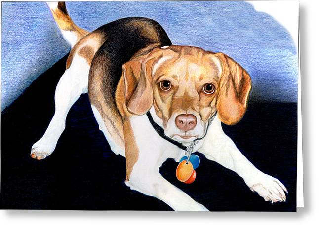 Dog Owner Drawings Greeting Cards - Lets Play Greeting Card by Londie Benson
