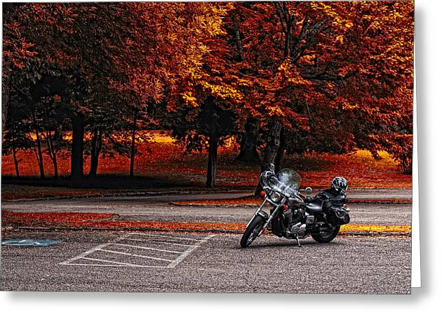 Basement Greeting Cards - Lets Ride Greeting Card by Mark Papke