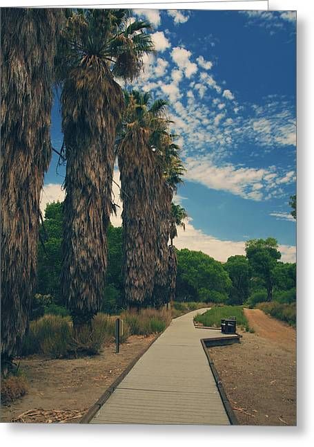 Park Benches Photographs Greeting Cards - Lets Walk This Path Together Greeting Card by Laurie Search