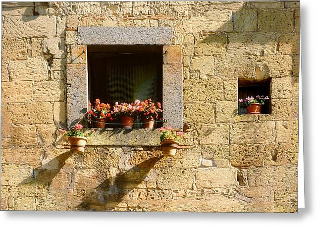 Stone Flower Planter Greeting Cards - Lets watch the flowers grow.. Greeting Card by A Rey