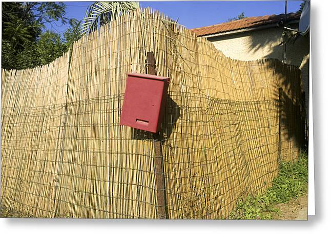 Bamboo Fence Greeting Cards - Letter box Greeting Card by Daniel Blatt