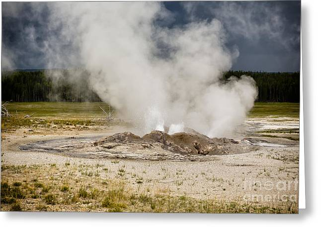 Famous Photographer Greeting Cards - Letting Off Steam - Yellowstone Greeting Card by Belinda Greb