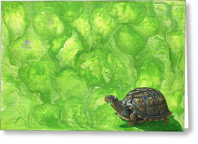 Lettuce Greeting Cards - Lettuce Fetish Greeting Card by Cara Bevan