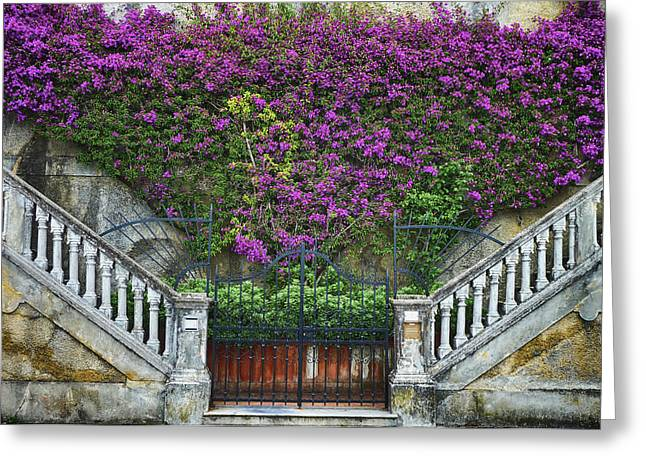 Gift Ideas For Her Greeting Cards - Levanto Facade Greeting Card by Gigi Ebert