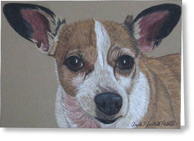 Toy Dog Drawings Greeting Cards - Levi - Chihuahua Commission Greeting Card by Anita Putman
