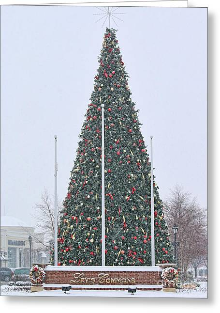 Levis Greeting Cards - Levis Commons Christmas Tree Greeting Card by Jack Schultz