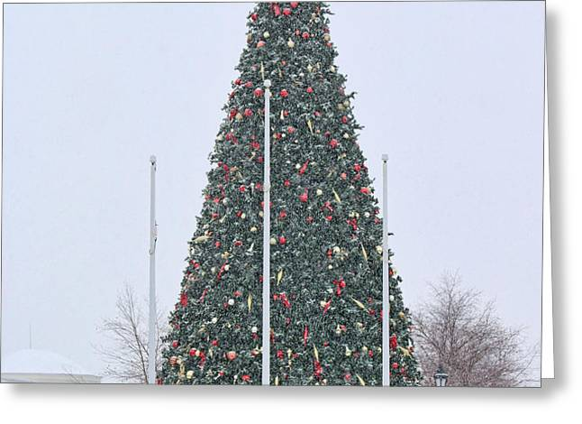 Levis Commons Christmas Tree Greeting Card by Jack Schultz