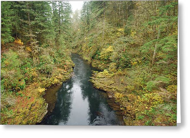 Lewis River  Greeting Card by Twenty Two North Photography