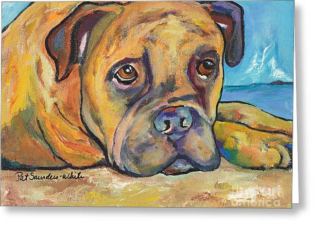 Framed Pit Bull Print Greeting Cards - Lexie Greeting Card by Pat Saunders-White