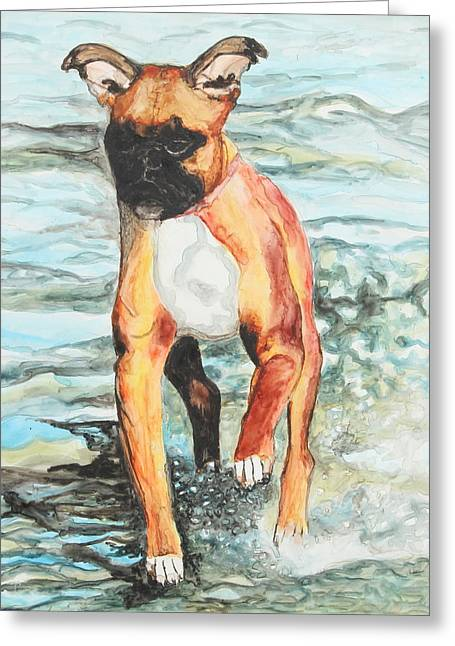 Breeds Greeting Cards - Leyla Greeting Card by Jeanne Fischer