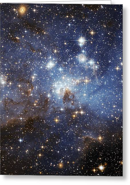 Interstellar Space Photographs Greeting Cards - LH 95 Nebula Greeting Card by Celestial Images