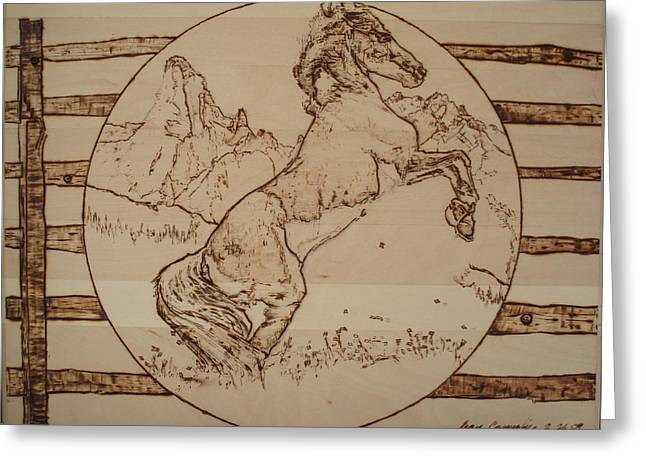 Liberation Pyrography Greeting Cards - Liberated Horse Greeting Card by Sean Connolly