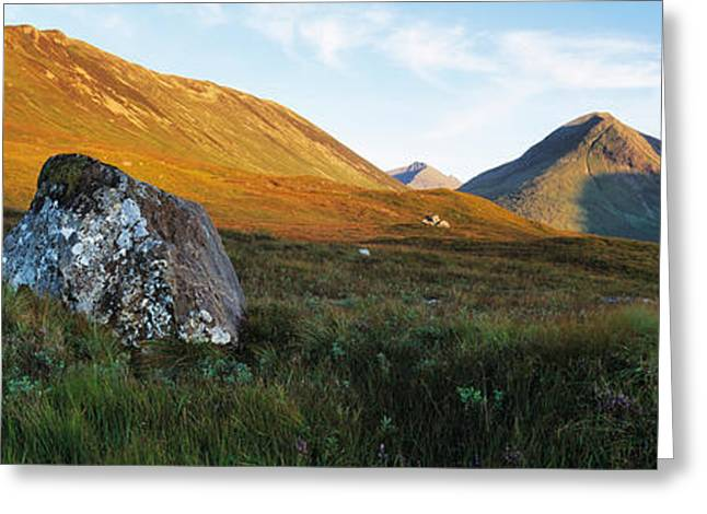 Lichen Greeting Cards - Lichen Covered Rock In A Field, Glen Greeting Card by Panoramic Images