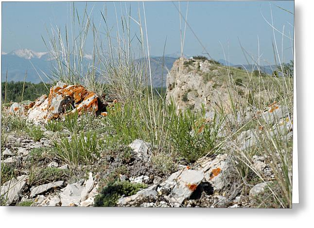 Lichen Photo Greeting Cards - Lichen Covered Rocks at Missouri Headwaters State Park Montana Greeting Card by Bruce Gourley