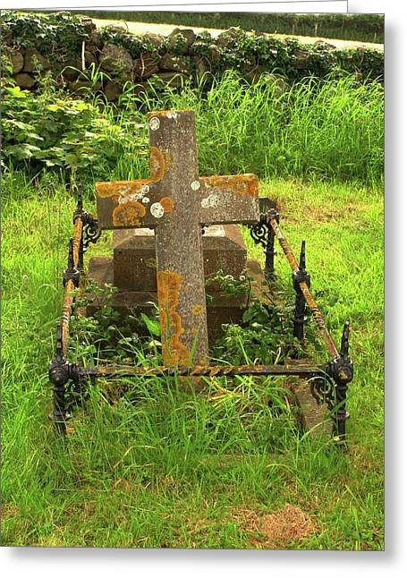 Lichen On A Stone Cross In Clean Air Greeting Card by Cordelia Molloy
