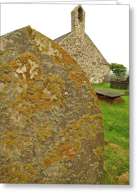 Lichen On Gravestone In Unpolluted Air Greeting Card by Cordelia Molloy