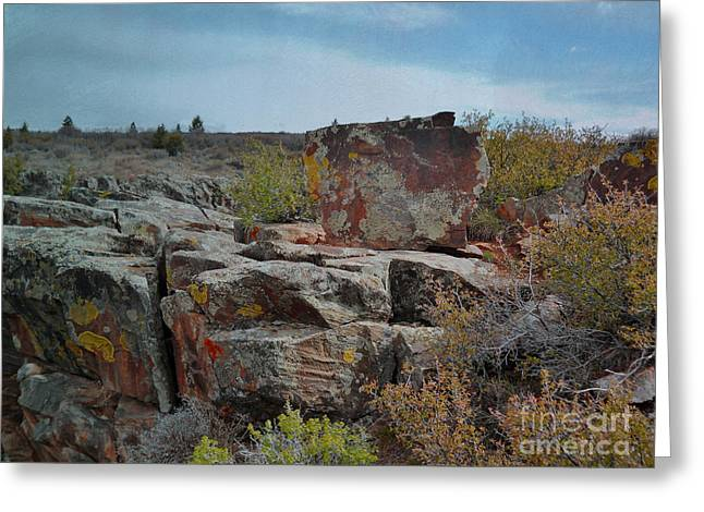 Black Painted Edges Greeting Cards - Lichen Rocks in the Black Canyon Greeting Card by Janice Rae Pariza