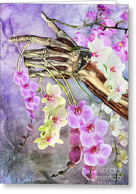 Nature Study Digital Greeting Cards - Life and Death Greeting Card by Michael  Volpicelli