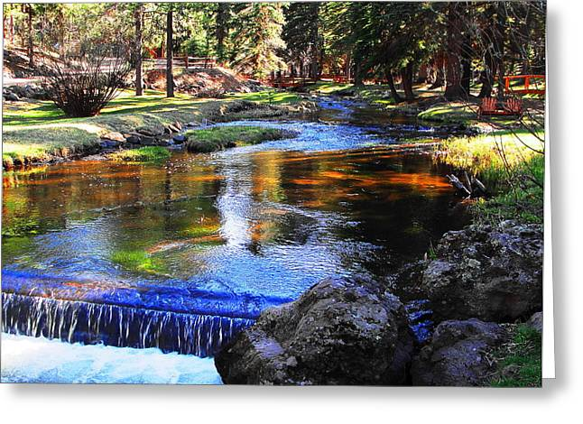 Babbling Greeting Cards - Life By A Babbling Brook Greeting Card by Natalie Ortiz