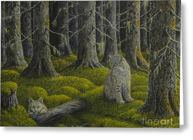 Bobcats Greeting Cards - Life in the woodland Greeting Card by Veikko Suikkanen