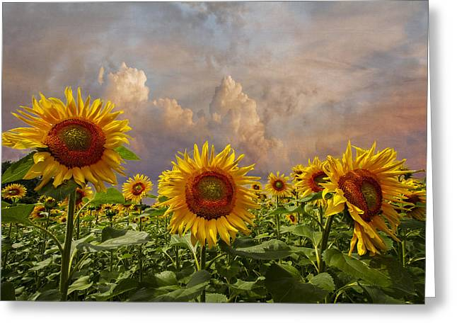Swiss Photographs Greeting Cards - Life is Good Greeting Card by Debra and Dave Vanderlaan
