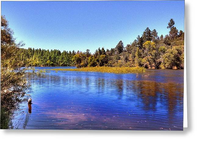 Prescott Greeting Cards - Life is Grand Greeting Card by Thomas  Todd