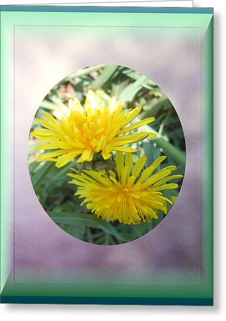 Life Is Made Up Of Dandelions Greeting Card by Patricia Keller