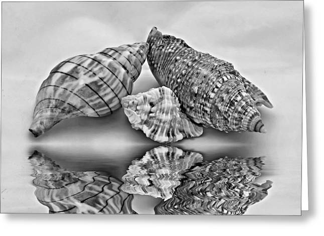 Photography Lightning Digital Art Greeting Cards - Life Lines 2 monochrome Greeting Card by Steve Harrington