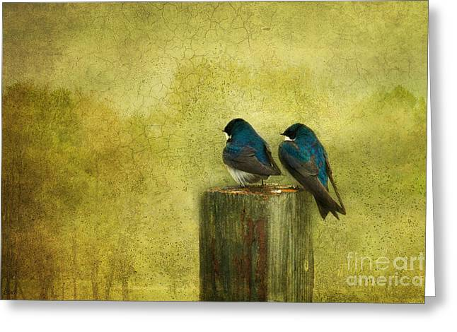 Pairs Mixed Media Greeting Cards - Life Long Friends Greeting Card by Reflective Moment Photography And Digital Art Images